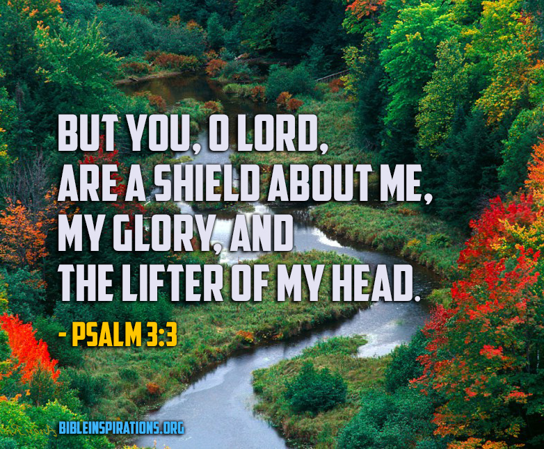 psalm-3-3