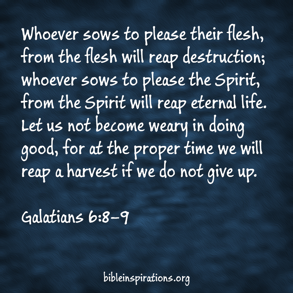 Whoever sows to please their flesh, from the flesh will reap destruction; whoever sows to please the Spirit, from the Spirit will reap eternal life. Let us not become weary in doing good, for at the proper time we will reap a harvest if we do not give up. Galatians 6:8-9