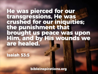 He was pierced for our transgressions, He was crushed for our iniquities; the punishment that brought us peace was upon Him, and by His wounds we are healed. Isaiah 53:5