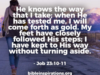 But he knows the way that I take; when he has tested me, I will come forth as gold. My feet have closely followed his steps; I have kept to his way. - job-23:10-11