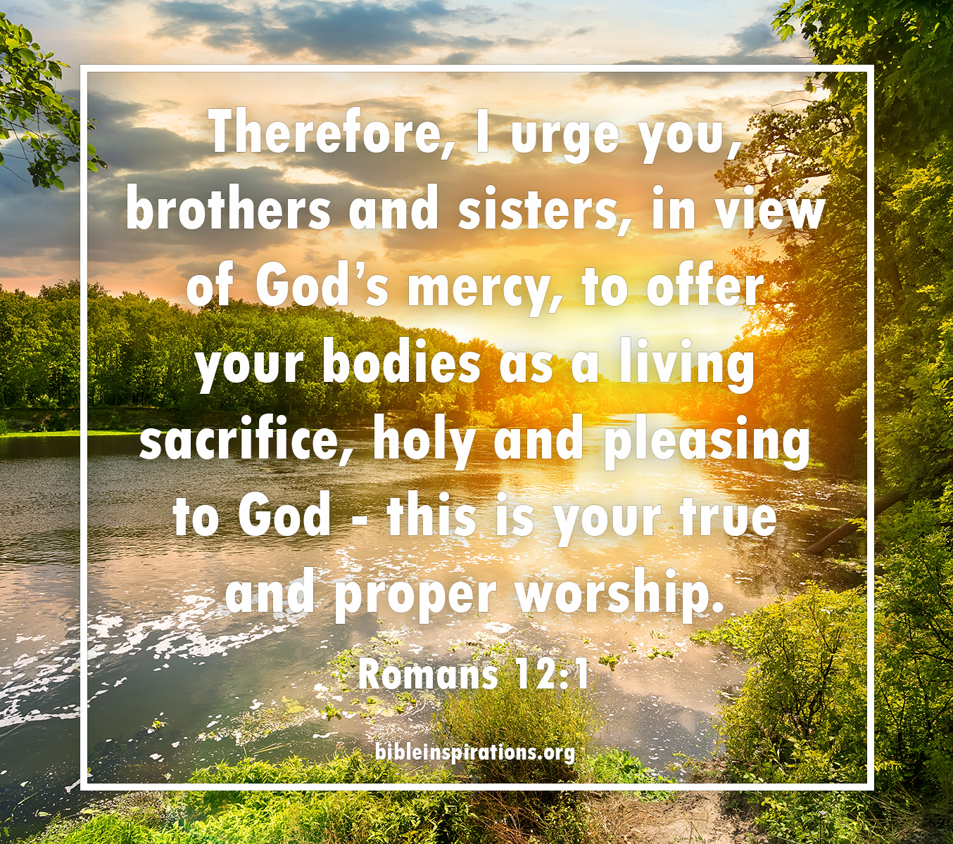 Therefore, I urge you, brothers and sisters, in view of God's mercy, to offer your bodies as a living sacrifice, holy and pleasing to God - this is your true and proper worship. - Romans 12:1