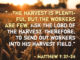"Then He said to his disciples, ""The harvest is plentiful but the workers are few. Ask the Lord of the harvest, therefore, to send out workers into his harvest field."" - Matthew 9:37-38 matthew-9-37-38"