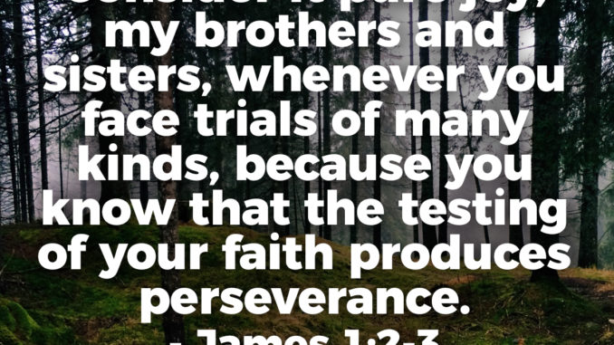 Consider It Pure Joy, My Brothers And Sisters, Whenever You Face Trials Of Many Kinds, because you know that the testing of your faith produces perseverance. - James 1:2-3