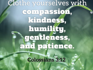 Therefore, as God's Chosen People, Holy and Dearly Loved, Clothe Yourselves with Compassion, Kindness, Humility, Gentleness and Patience. - Colossians 3:12